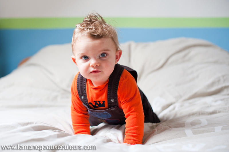photographe-bebe-famille-lille-la-bassee-tourcoing-seance-photo-enfant-quatre-pattes (4)