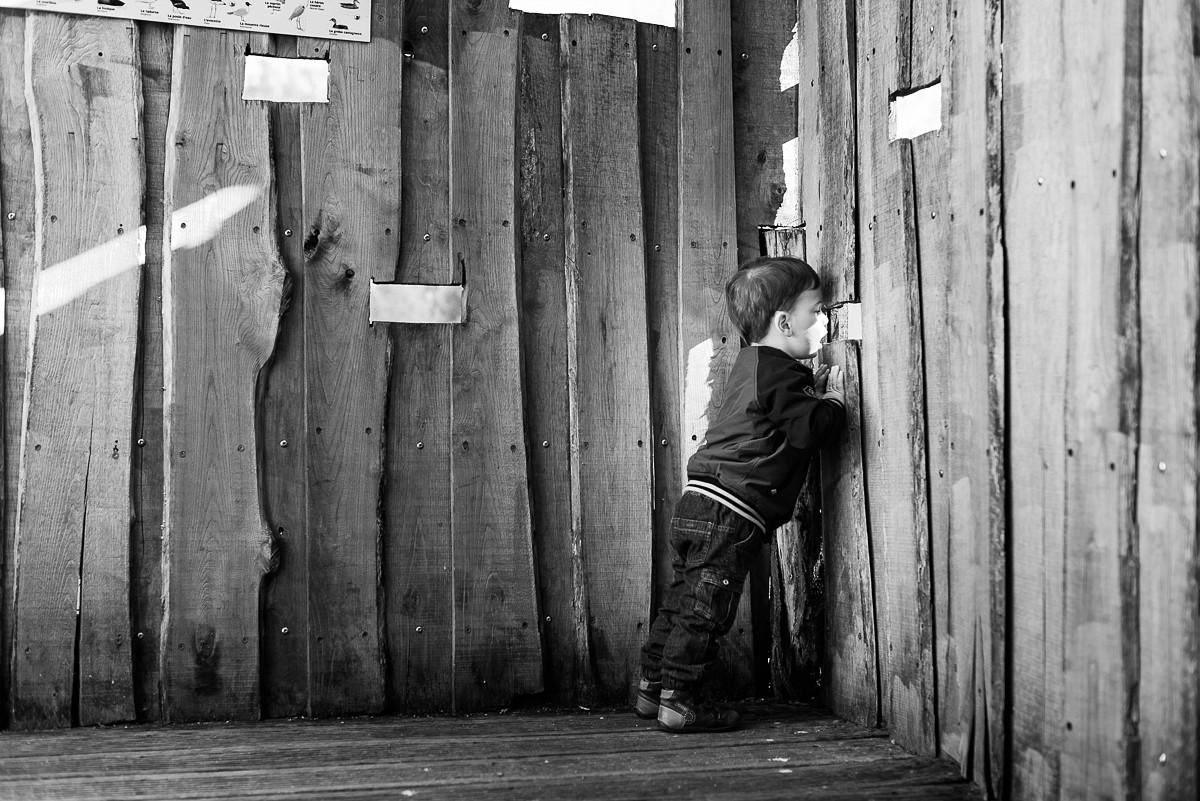 séance photo en famille aux marais de fretin petit garçon curieux naturel non posé lifestyle reportage