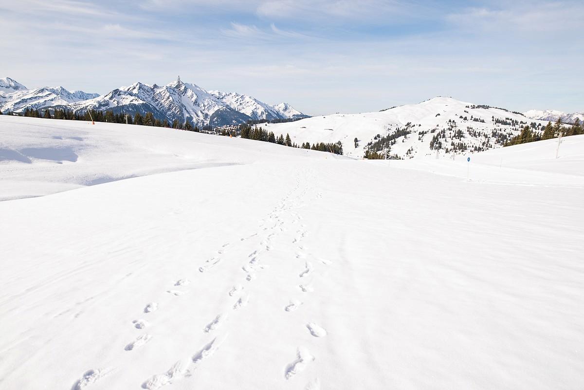 randonnée en amoureux dans la station de ski les saisies avec vue sur le mont blanc